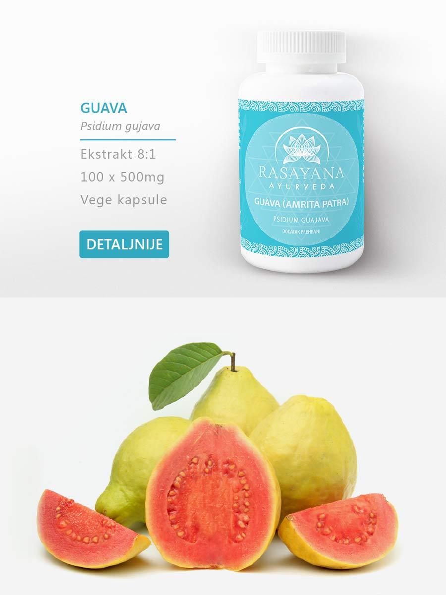 Shop Kupi proizvod Guava Amrita Patra Psidium gujava Ekstrakt svježeg lista Suplement Dodatak prehrani Rasayana Ayurveda