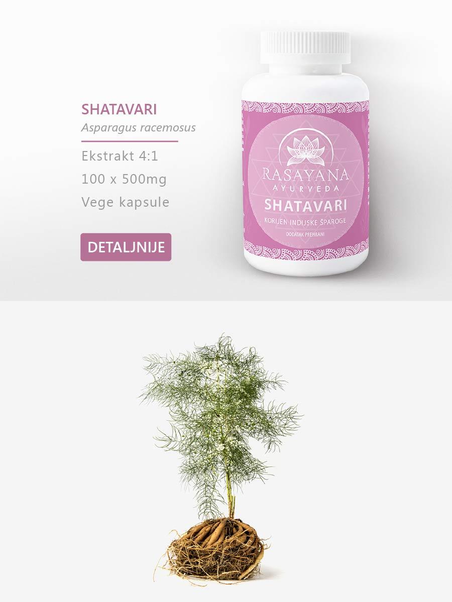 Shop Kupi proizvod Shatavari Šatavari Indijska šparoga Asparagus racemosus Ekstrakt svježeg korijena Suplement Dodatak prehrani Rasayana ayurveda