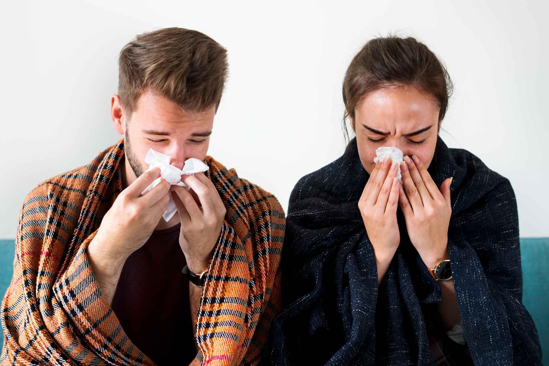 curi nos upala sinusa sinusitis prehlada